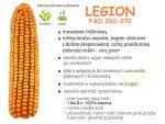 Nasiona kukurydzy Legion (FAO 260-270)
