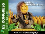 Nasiona kukurydzy Es Kongress FAO 230-240 EURALIS