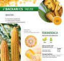 Nasiona kukurydzy Backari CS (FAO 250)