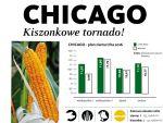 Nasiona kukurydzy CHICAGO FAO 250 SAATBAU