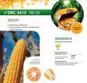 Nasiona kukurydzy DKC 3415 (FAO 250)