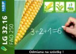 Nasiona kukurydzy LG 32.16 (FAO 250) Limagrain