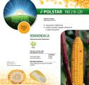 Nasiona kukurydzy Polstar (FAO 210-220)