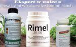 Rimel 25 SG 60g + Asystent + Cornmax na Perz w kukurydzy