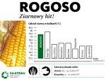 Nasiona kukurydzy ROGOSO FAO 210-220 SAATBAU