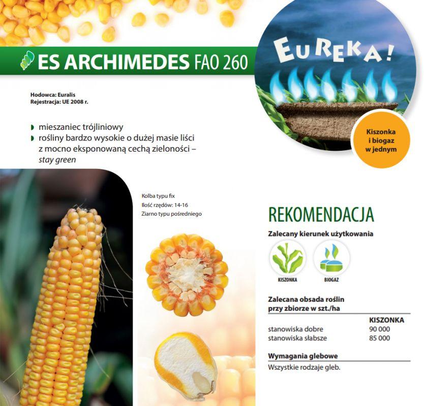 Nasiona kukurydzy ES Archimedes (FAO 260) EURALIS