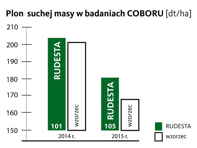 Nasiona kukurydzy RUDESTA FAO 250